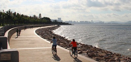 shenzhen bay park cycling