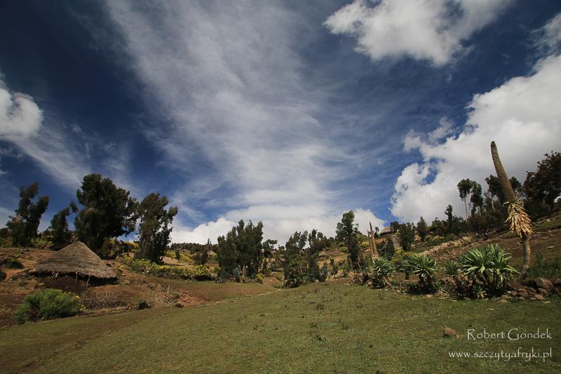 Piękne widoki w Górach Semien