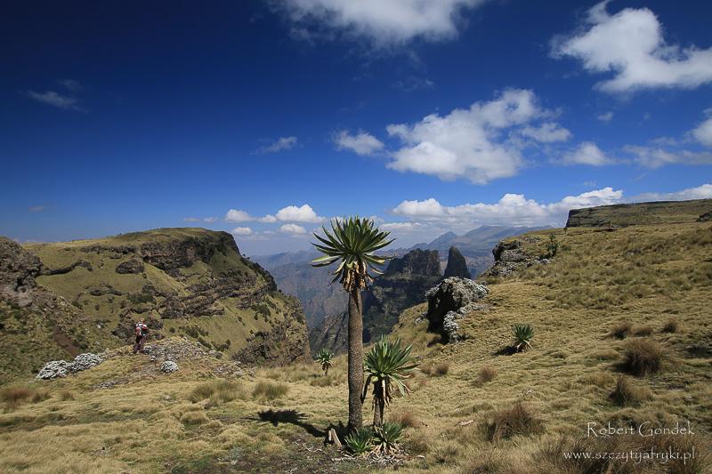 Koszt trekkingu w Etiopii - piękne Góry Semien