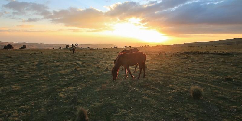 Zachód słońca w Górach Semien