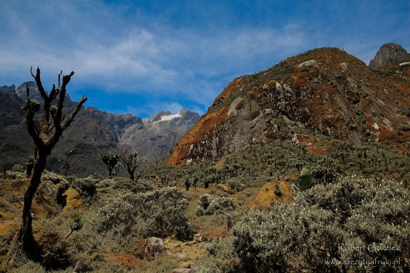 Najwyższe góry w Afryce na zdjęciach - Ruwenzori