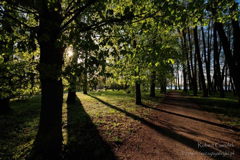 Wiosna w Szczecinku
