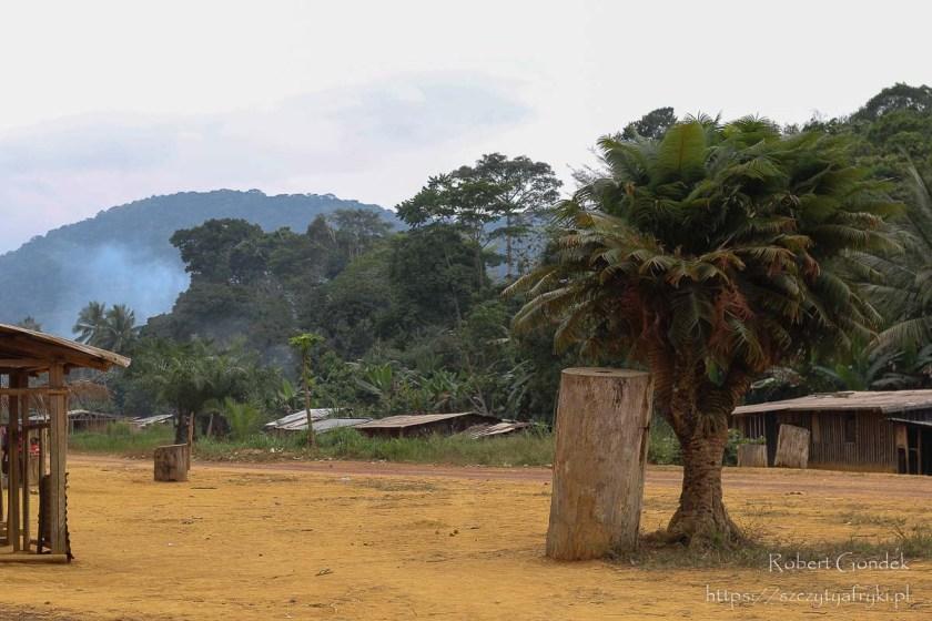 Boka Boka i Mont Bengoué w oddali