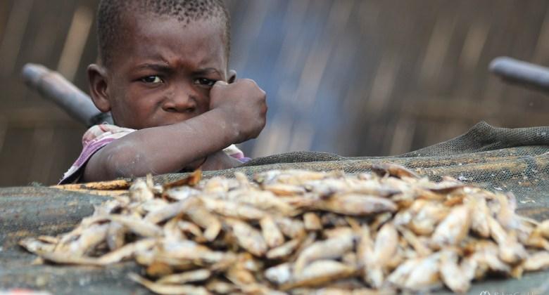 Ryby i targi rybne nad jeziorem Malawi