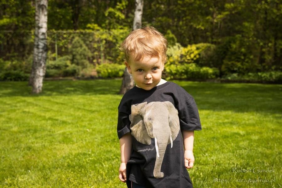 T-shirt ze słoniem dla dzieci