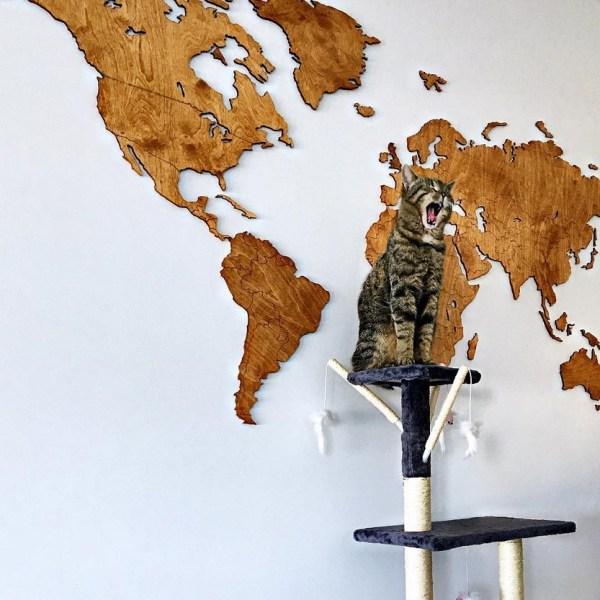 Dekoracja domu - drewniana mapa świata na ścianę z granicami - widok