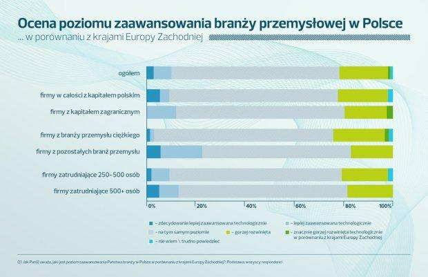 Ocena poziomu zaawansowania branży przemysłowej w Polsce