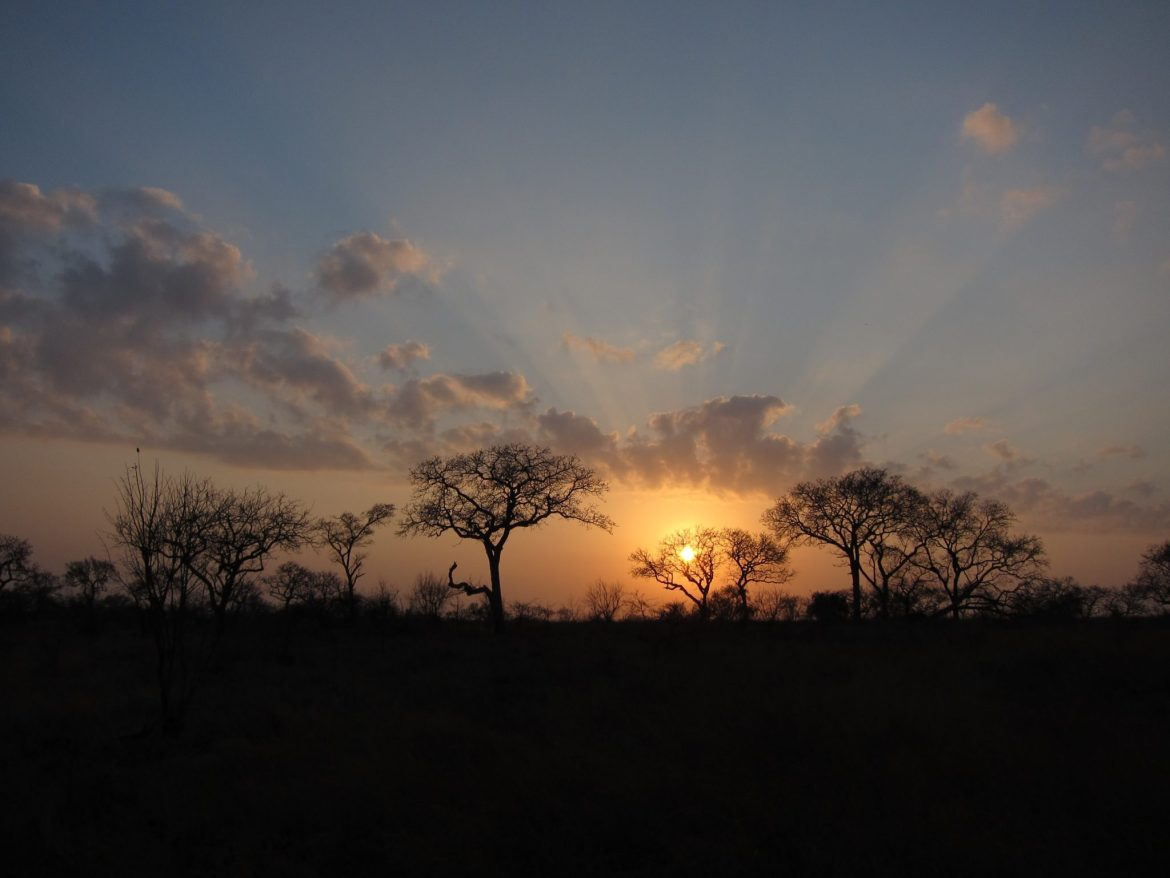 Serenity in an African Sunrise