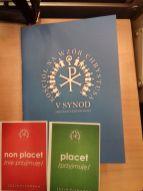 II sesja synodu01
