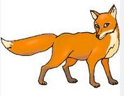 Fox right