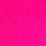 Fuchsia copie