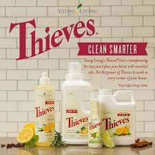 thieves clean smarter
