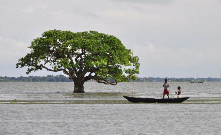 Kishoreganj Wetland Trip