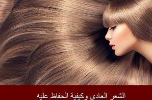 الشعر العادي وكيفية الحفاظ عليه؛