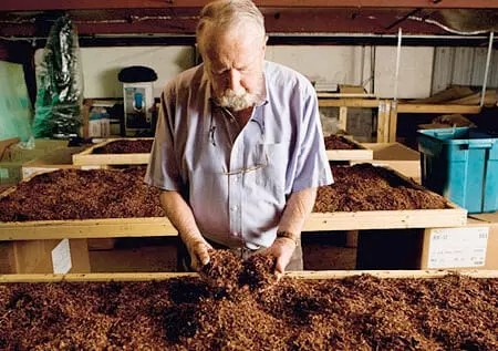 Lavorazione tabacco da pipa