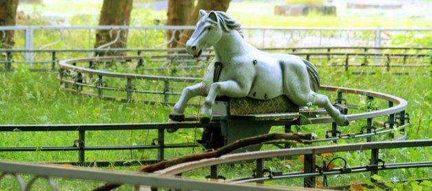 Darf's ein bisschen Pferd sein