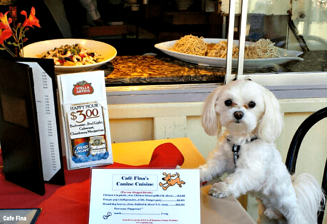 Cafe Fina in Monterey County welcomes dogs! TablerPartyOfTwo.com