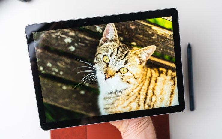 Microsoft Surface Go 2 Display