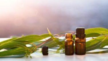 Huiles essentielles pour l'asthme