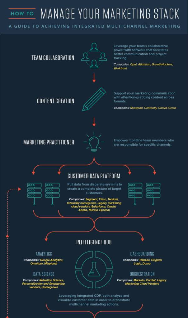 how-to-organize-your-marketing-infographic_01