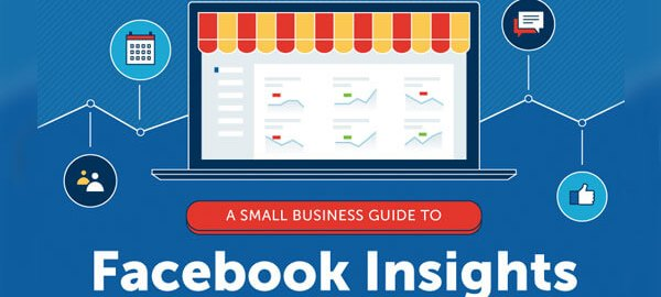 A-Small-Business-Guide-to-Facebook-Insights-315