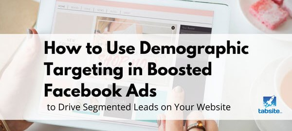 How-To-Use-Demographic-Targeting-in-Boosted-Facebook-Post-Ads-to-Drive-Segmented-Leads-on-Your-Website-315