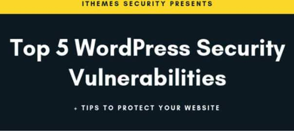 WordPress-Security-Vulnerabilities-and-How-to-Avoid-Them-Infographic-700
