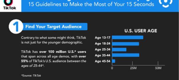 TikTok Tips Infographic.