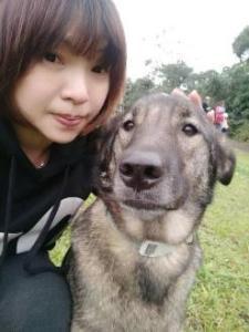 寵物溝通推薦、寵物溝通師、陳柔穎(Chen Rou-Ying)