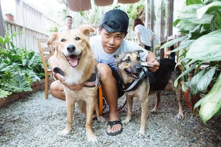 寵物溝通推薦、寵物溝通師、hank