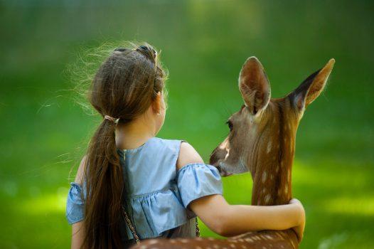 寵物溝通推薦、寵物溝通課程、寵物溝通自學