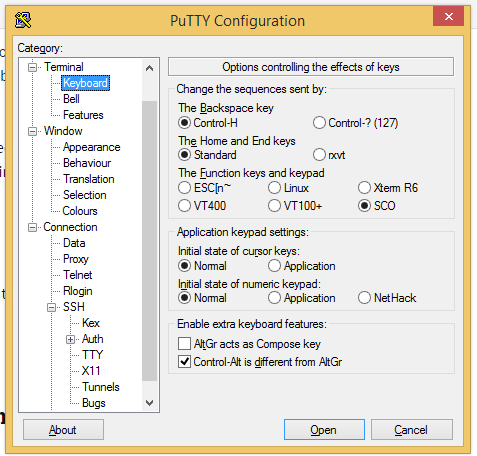 Correct keyboard settings for using putty with SCO
