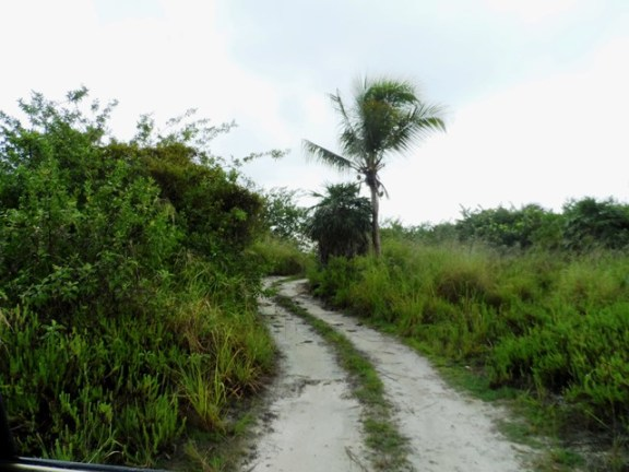 the road less traveled belize