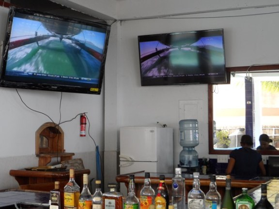watching america's cup at the  seahorse lounge belize