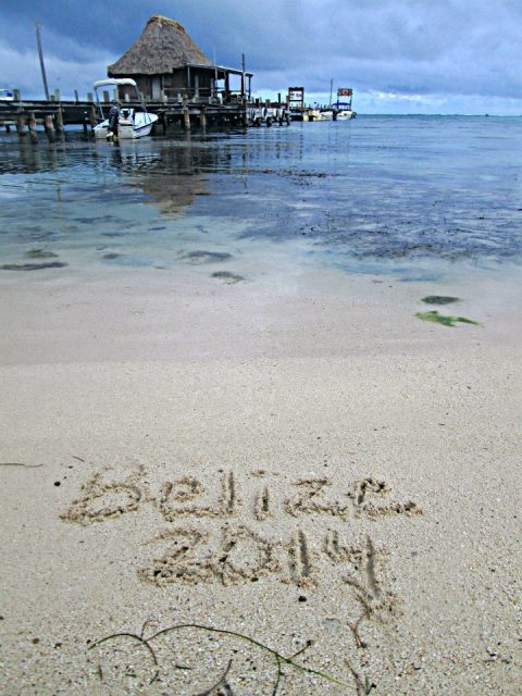 belize beach by amy fordyce