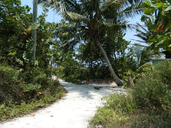 ambergris caye belize roads