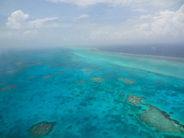 flying over lighthouse reef belize