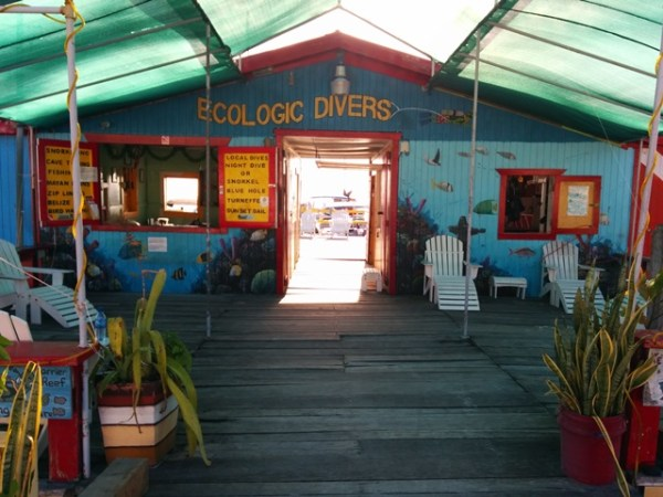 ecologic divers belize
