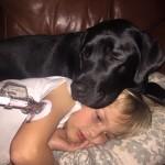 Su adorable perro se porta como un héroe y salva la vida de su hijo