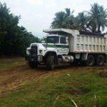 DRNA supervisa implementación del plan de restauración del Bosque estatal de Ceiba