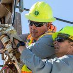 AEE lanza nuevo portal para informar progreso en la reparaciones del sistema eléctrico en la Isla