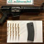 HSI analiza asumir caso de armas en Fajardo
