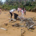Preparan las playas del RNCEN para recibir al Tinglar
