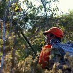 Activan protocolo de búsqueda por cazador desaparecido en Isla de Mona
