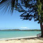 Anuncian reapertura de los balnearios Sun Bay en Vieques y Seven Seas en Fajardo el jueves
