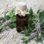 21 Wild Plants with Healing Properties