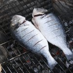 Tips On Grilling Your Summer Catch