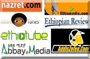 Image result for ethiopian websites
