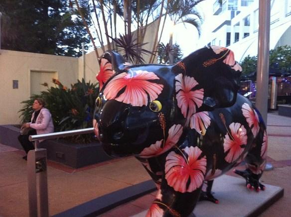 Gold Coast Drop Bear