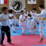 DF Collage Taekwondo Opendag1